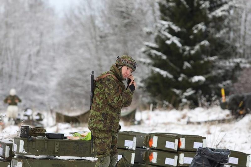 Armée Estonienne/Estonian Army - Page 3 5730