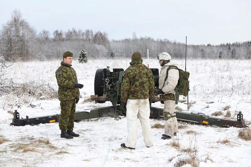 Armée Estonienne/Estonian Army - Page 3 6218