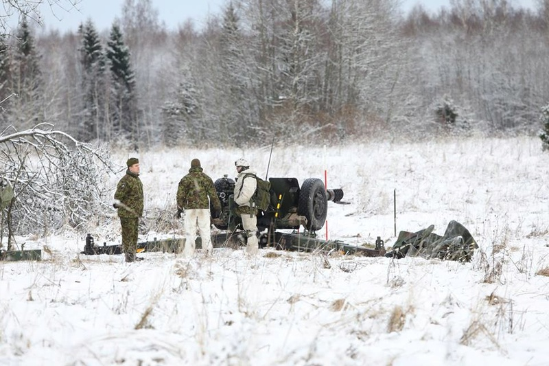 Armée Estonienne/Estonian Army - Page 3 6316