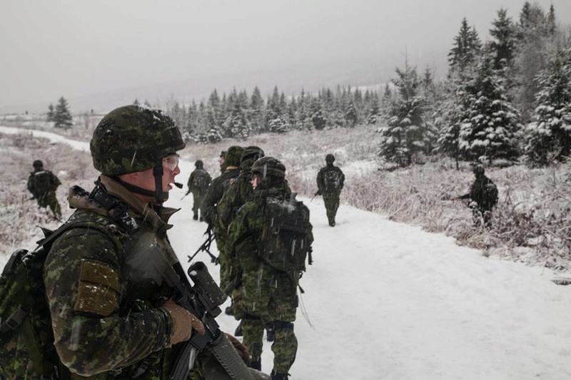 Armée canadienne/Canadian Armed Forces - Page 28 7013