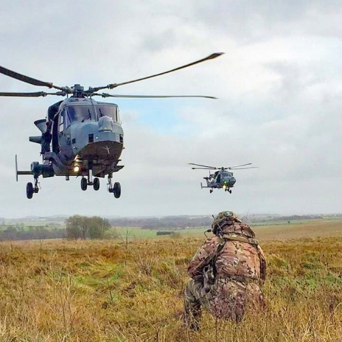 Armée Britannique/British Armed Forces - Page 8 8338