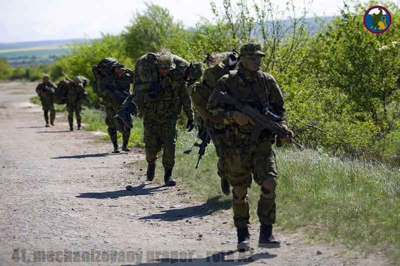 Armée tchèque/Czech Armed Forces - Page 10 914