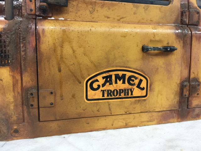 Scale D110 CAMEL TROPHY - Page 2 8fc23210