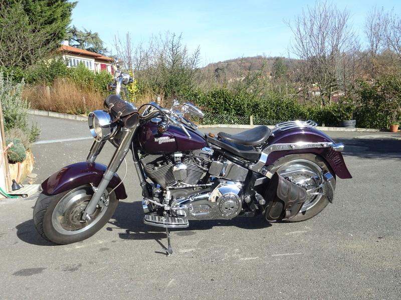 Combien de Softail sur le forum Passion-Harley - Page 13 Dsc02413