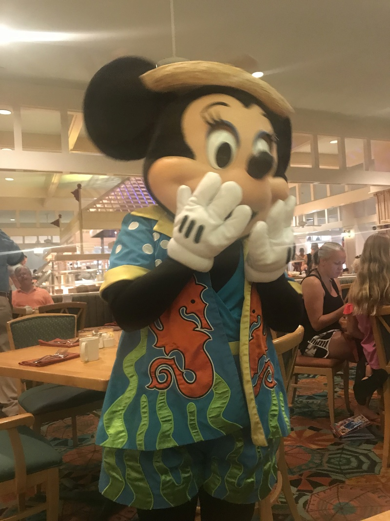 [TR Octobre 2017] Disney World - Disney Cruise Line - Universal  Img_3413