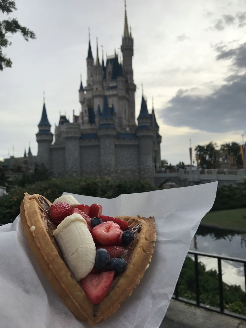 [TR Octobre 2017] Disney World - Disney Cruise Line - Universal  - Page 2 Img_3918