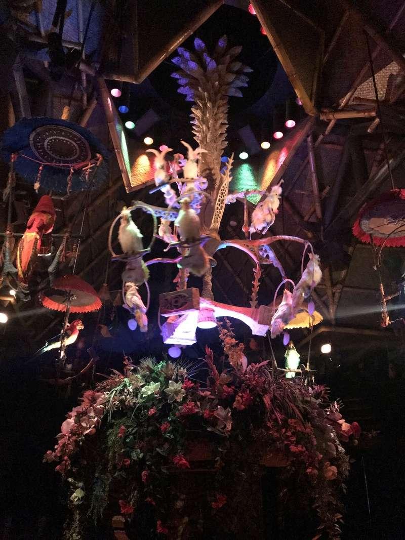 [TR Octobre 2017] Disney World - Disney Cruise Line - Universal  - Page 2 Img_3929