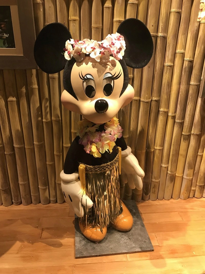 [TR Octobre 2017] Disney World - Disney Cruise Line - Universal  - Page 2 Img_4226
