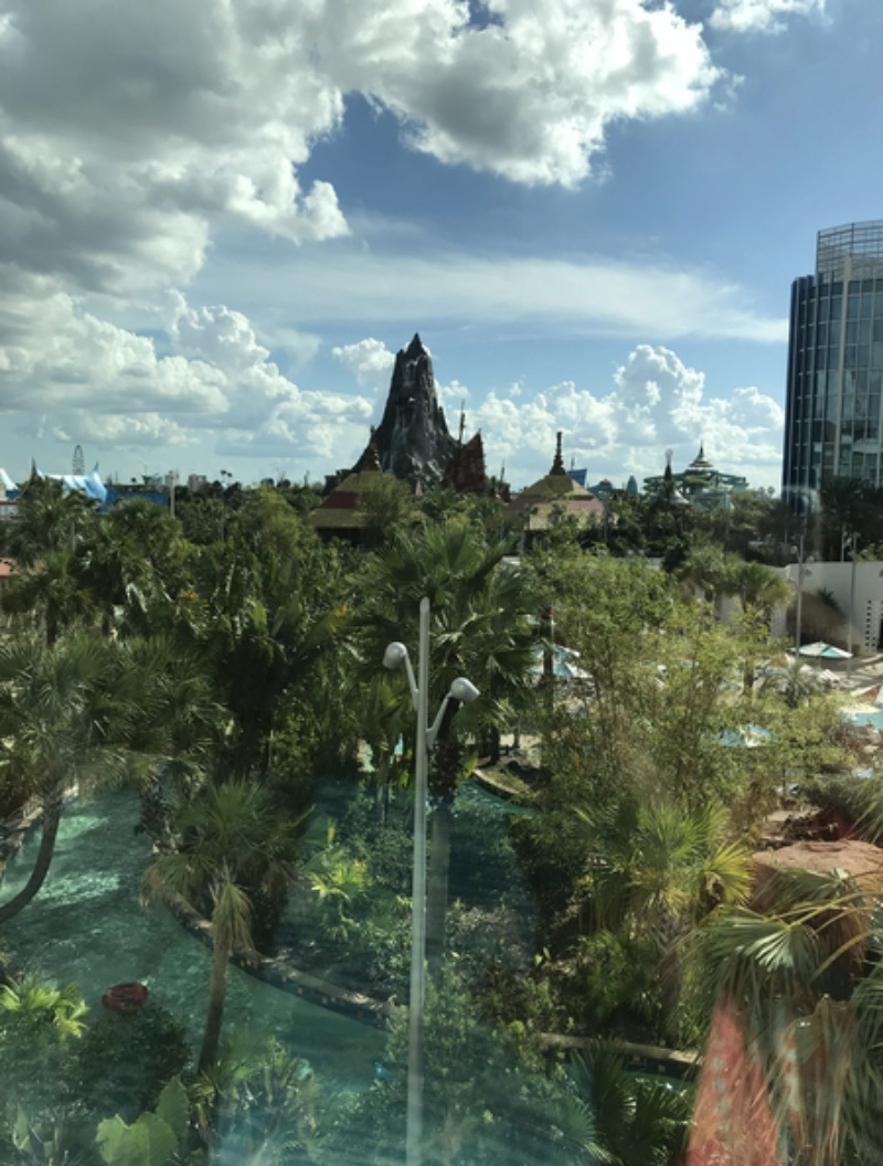 [TR Octobre 2017] Disney World - Disney Cruise Line - Universal  - Page 6 Img_5633