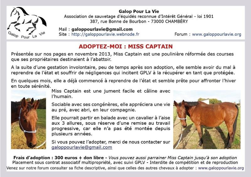 MISS CAPTAIN - TF née en 2000 - Adoptée en août 2018 par Morgane Affich12