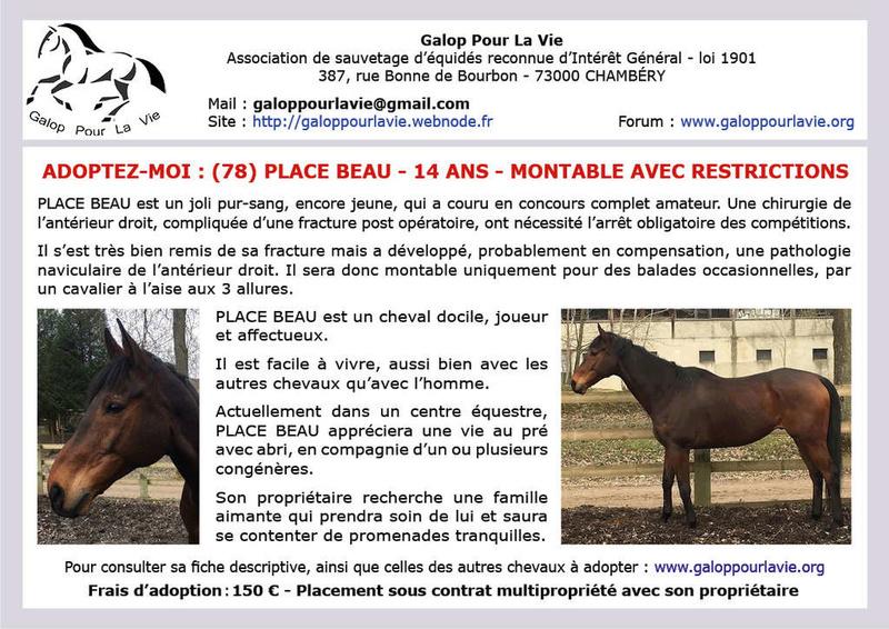 PLACE BEAU – PS né en 2004 – Décédé pendant l'hiver - Info du 29.05.2019 Place_10