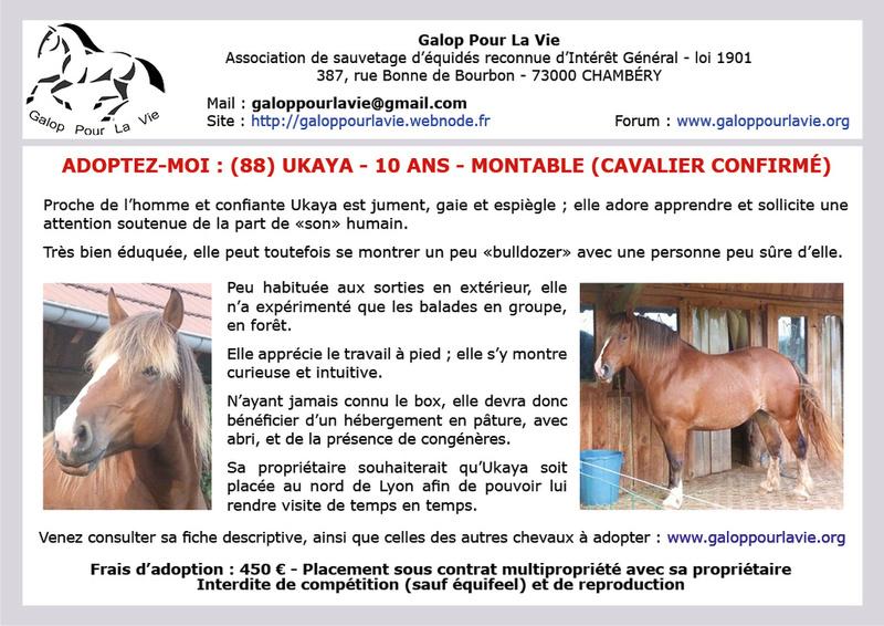 (88) UKAYA - ONC trait née en 2008 - montable - 450 € + don libre à GPLV Ukaya_10