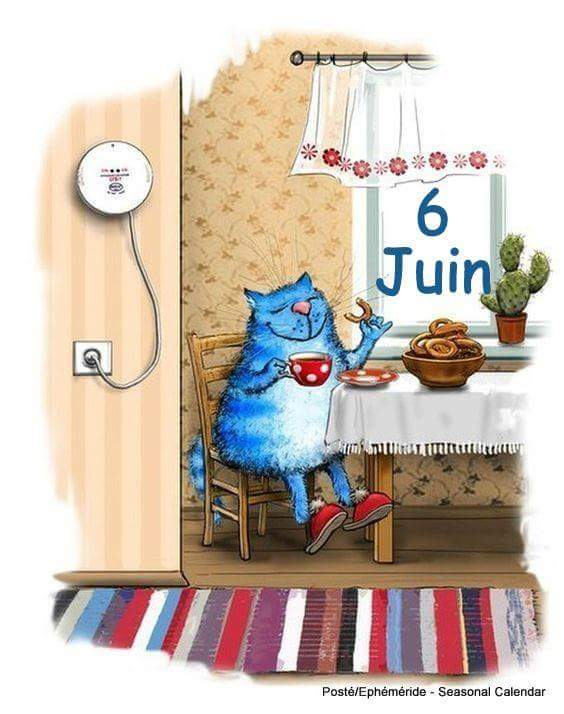 juin 2018 - Page 3 34471710