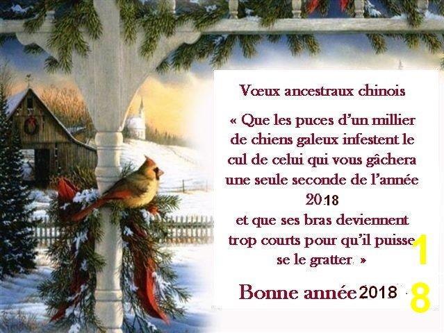 Meilleurs vœux à tous...Bonne année 2018 Cid_7511
