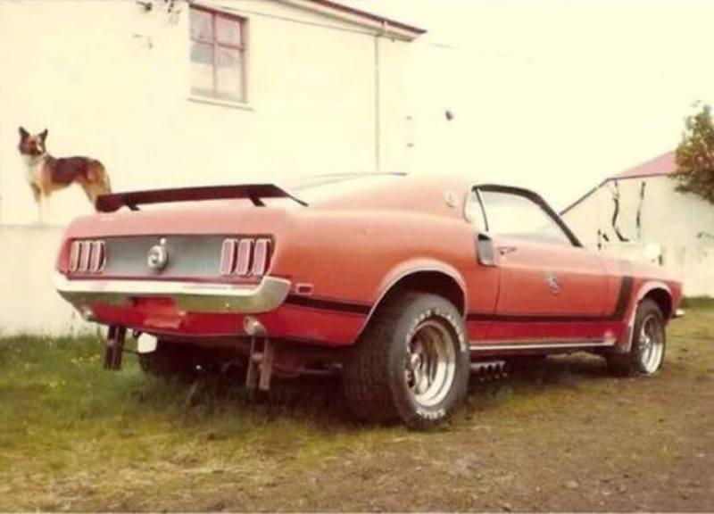 Vieille photo qui inclus des Mustang 65-73  14642410