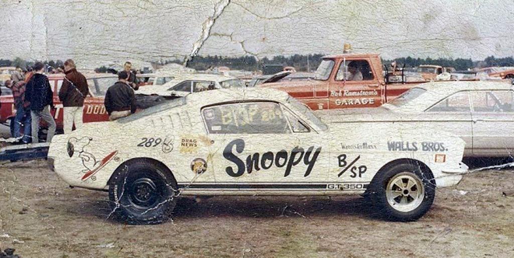 Vieilles photos qui inclus des Shelby Shelby16