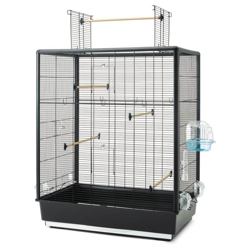 Quelle cage choisir La_37010