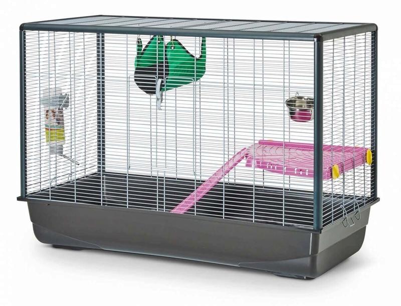 Quelle cage choisir La_57410