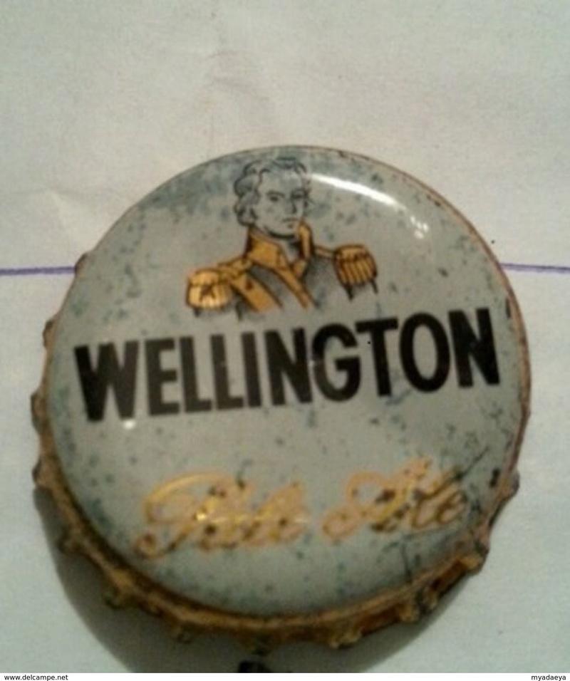 Bière Wellington  Brasserie Union Jumet avec liège Belgique Wellin10
