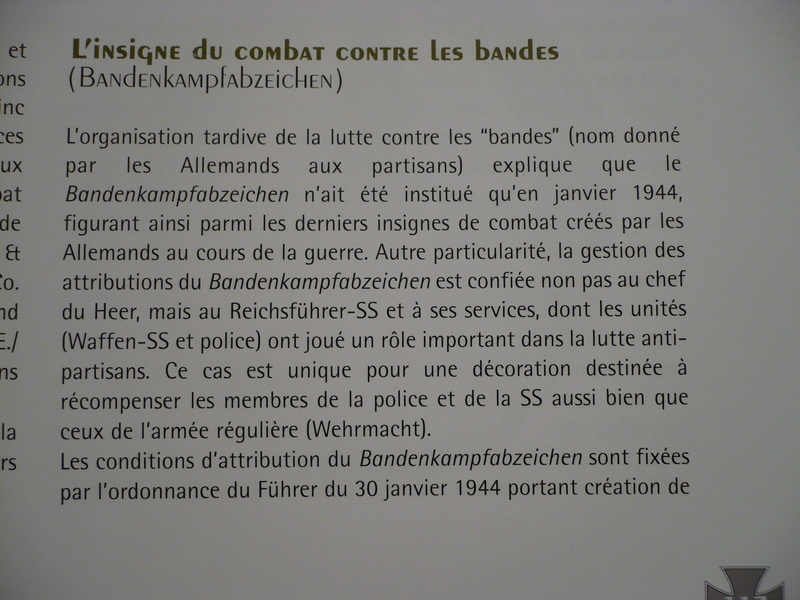 BANDENKAMPFABZEICHEN Juncker bronze type 2 1010