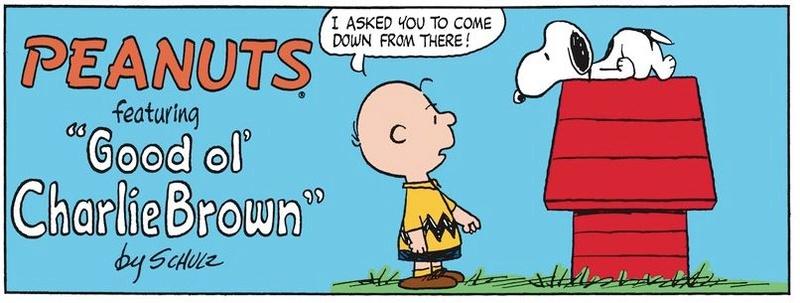 Peanuts. - Page 23 Captu482
