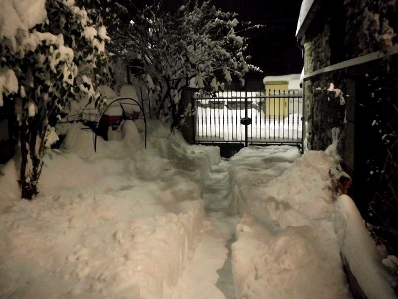 La neige sur mon village Dscf6314