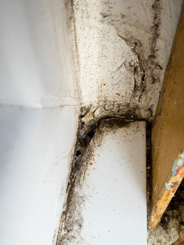 [Recherches]Comment rattrapper la pose de mes fenêtres ? P1020532