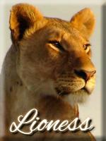 .:Taller de Scar:. Liones10