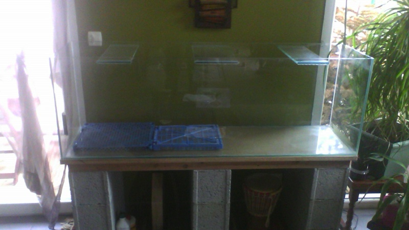 Projet bac nu 300 litres  Img_2012