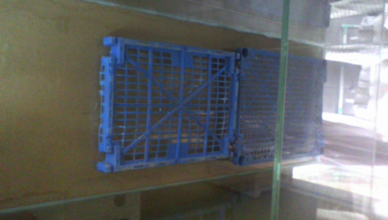 Projet bac nu 300 litres  Img_2013