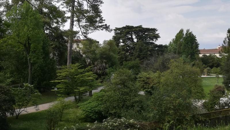 toscane [Vital] Img_2043