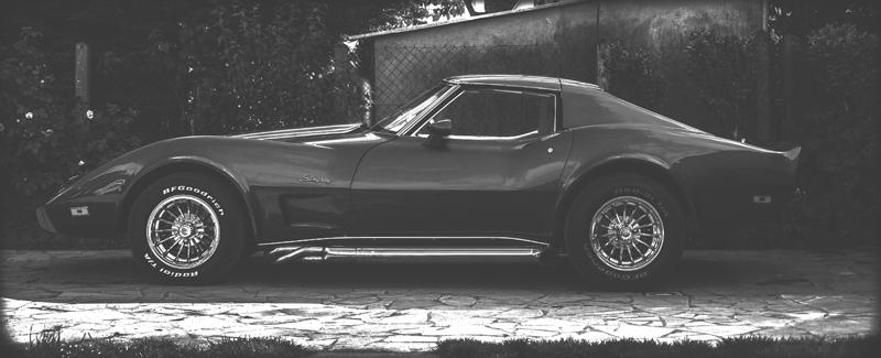 restauration complète Corvette C3 stingray 1977 entres amis - Page 41 Stingr10