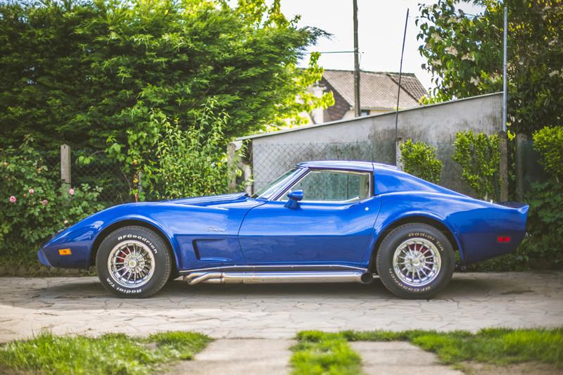 restauration complète Corvette C3 stingray 1977 entres amis - Page 41 Stingr13