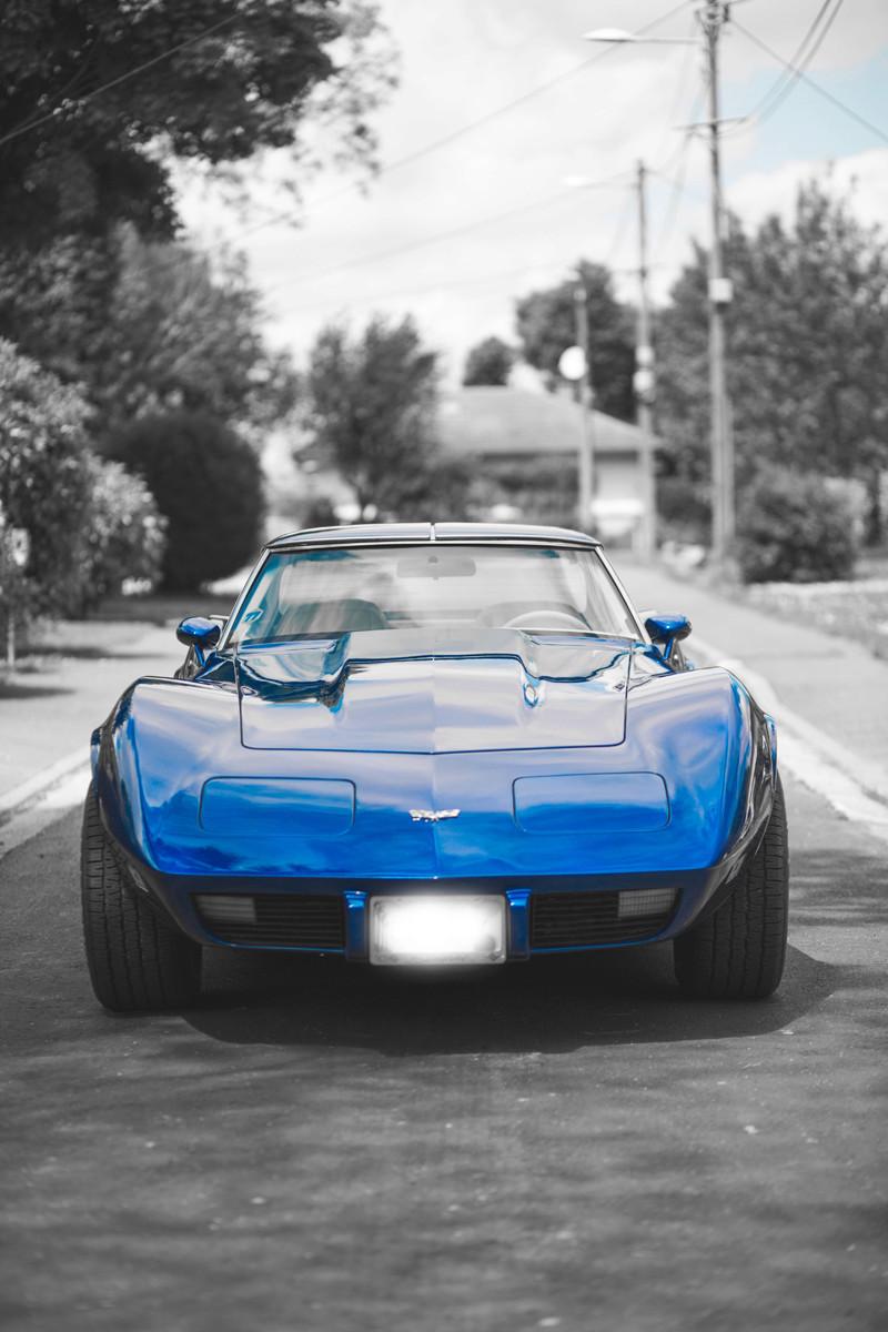 restauration complète Corvette C3 stingray 1977 entres amis - Page 41 Stingr16