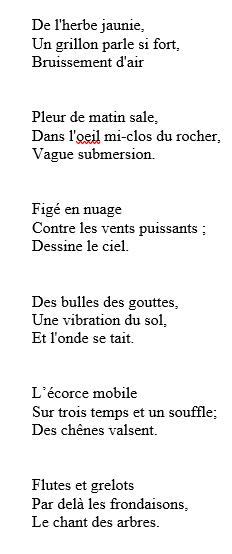 code d'honneur de zebra sara - Page 5 Haiku110