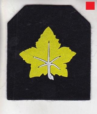 Les insignes de spécialité de la ZM-FN - Page 3 Genera11