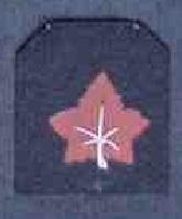 Les insignes de spécialité de la ZM-FN - Page 3 Marine27