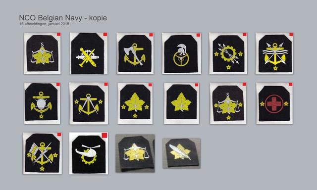 Les insignes de spécialité de la ZM-FN - Page 3 Nco_be10