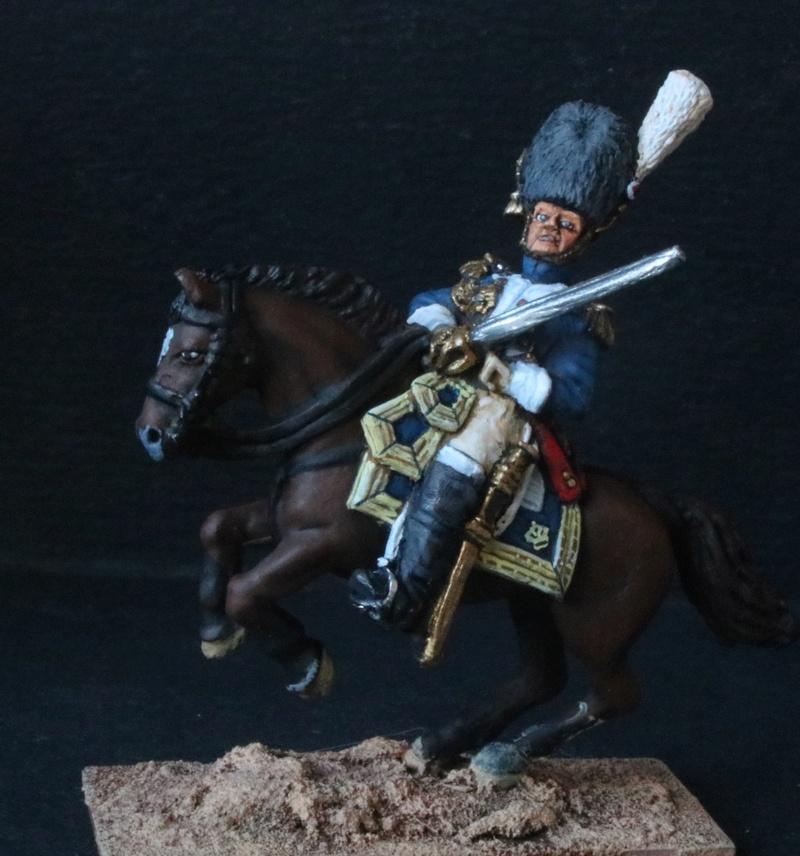 Grenadiers à cheval GI - Page 2 Img_1213