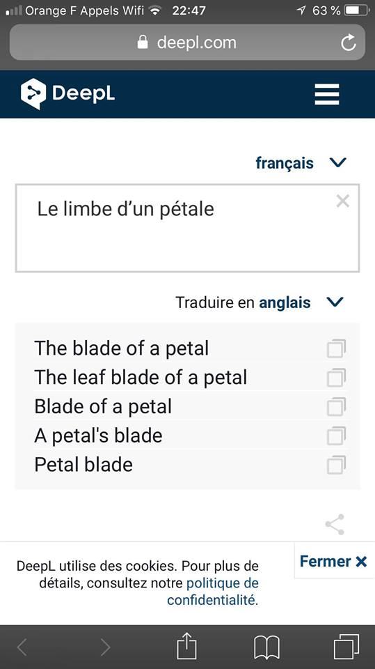 "What is "" Blade"" ?? Blade_14"