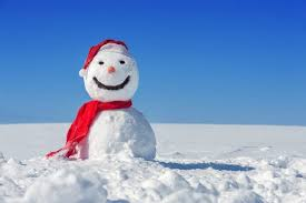 [Nesbo, Jo] Harry Hole - Tome 7: Le bonhomme de neige Aab11