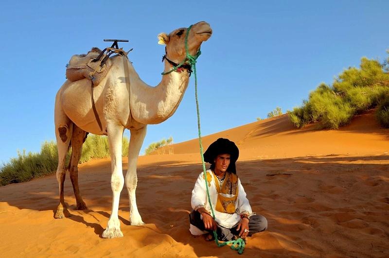 Desert de l'Erg Chebbi, Merzouga. Dsc_0211