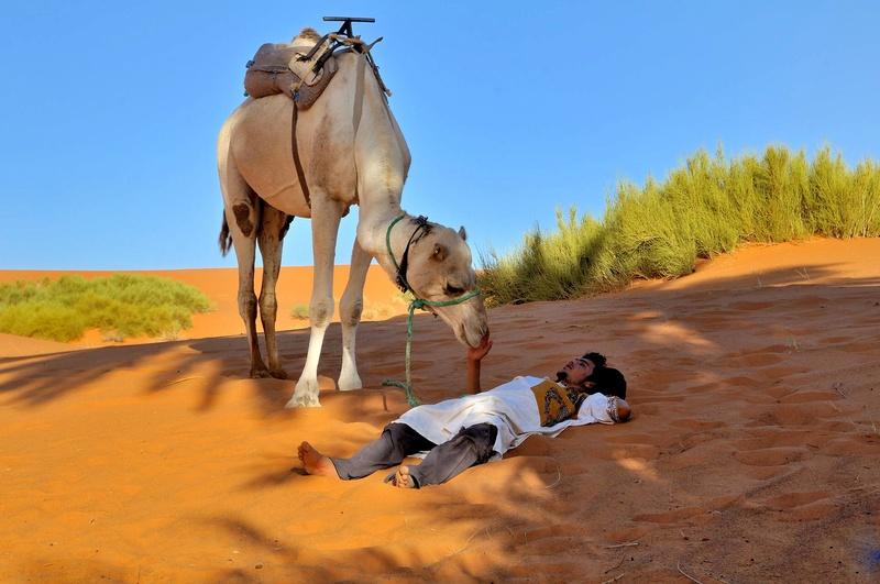 Desert de l'Erg Chebbi, Merzouga. Dsc_0212
