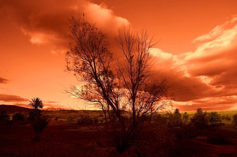 Coucher/lever de soleil Dsc_8411