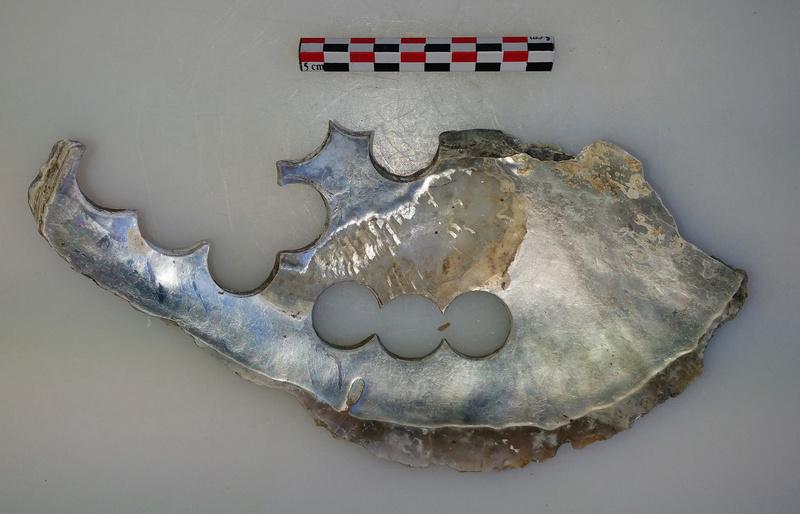 archéologie - Huître à boutons ... 20180523