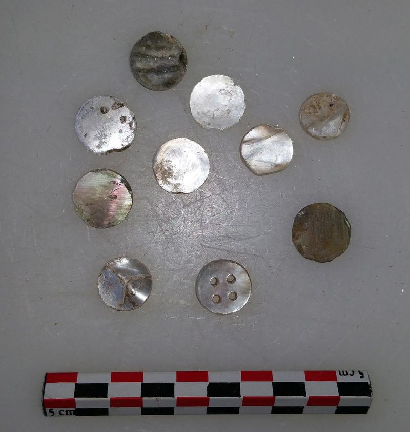 archéologie - Huître à boutons ... 20180529