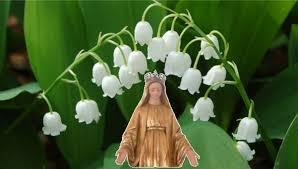 Joli mois de Mai, joli mois de MARIE... Une prière pour chaque jour.  Muguet12