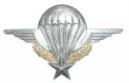 les numéros de brevets parachutistes Brevet10