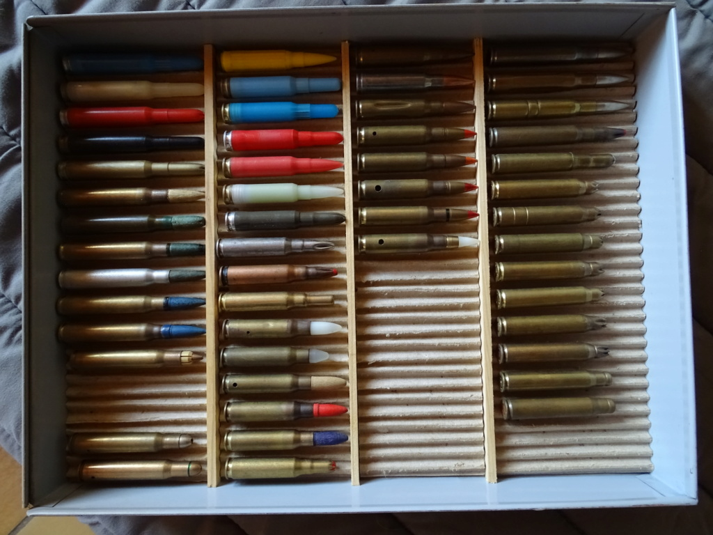 collection de munitions Dsc08520