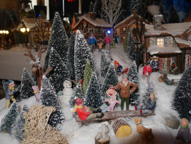 Noël 2017 à la montagne (Céline) P1040519